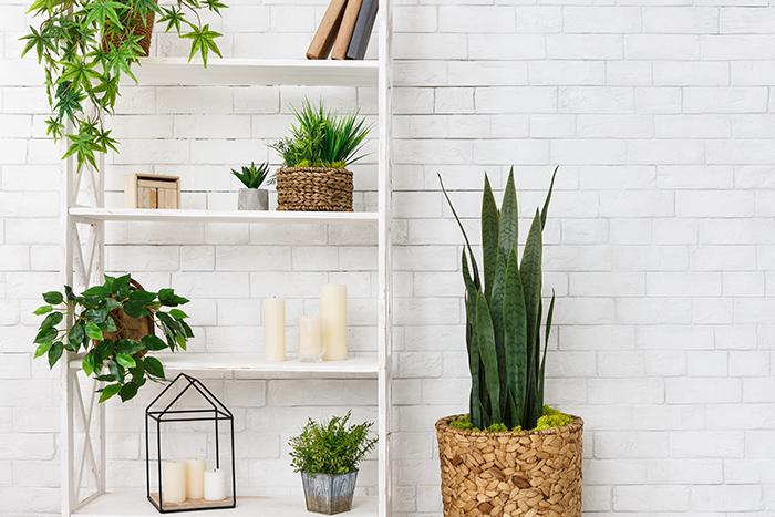 5 Ideas de decoración de verano para refrescar tu hogar